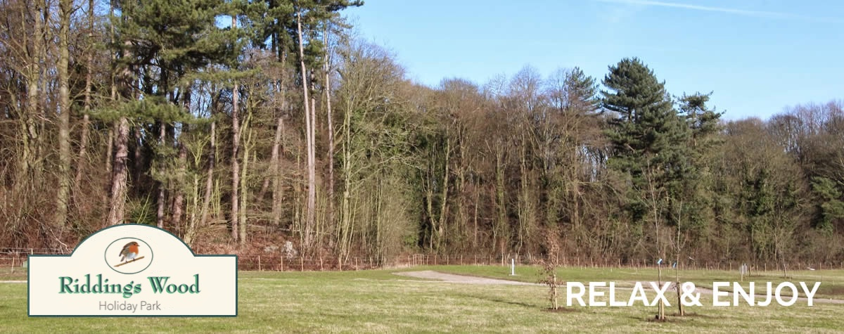 Riddings Wood Caravan and Camping Park - Camping in Derbyshire